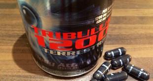 Tribulus Terrestris von Body Attack