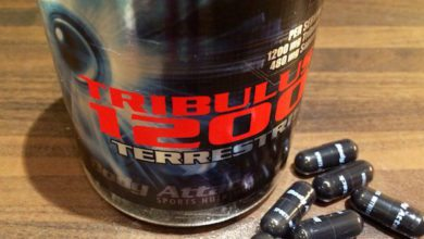 Tribulus Terrestris von Body Attack