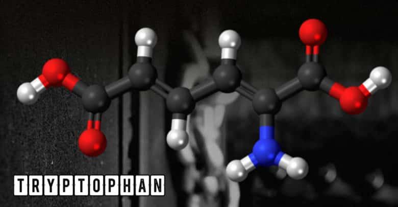 Tryptophan Aminosäure
