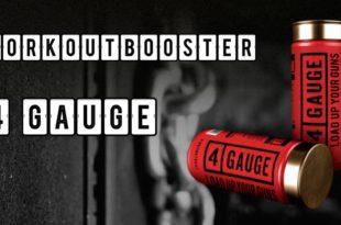 4 Gauge Workoutbooster