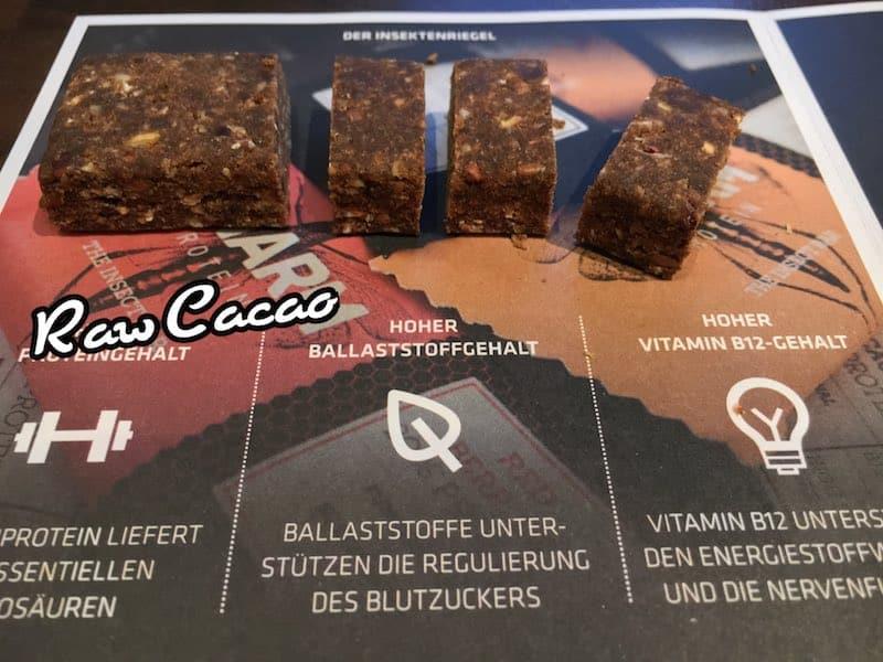 Swarm Protein Riege Raw Cacao Test