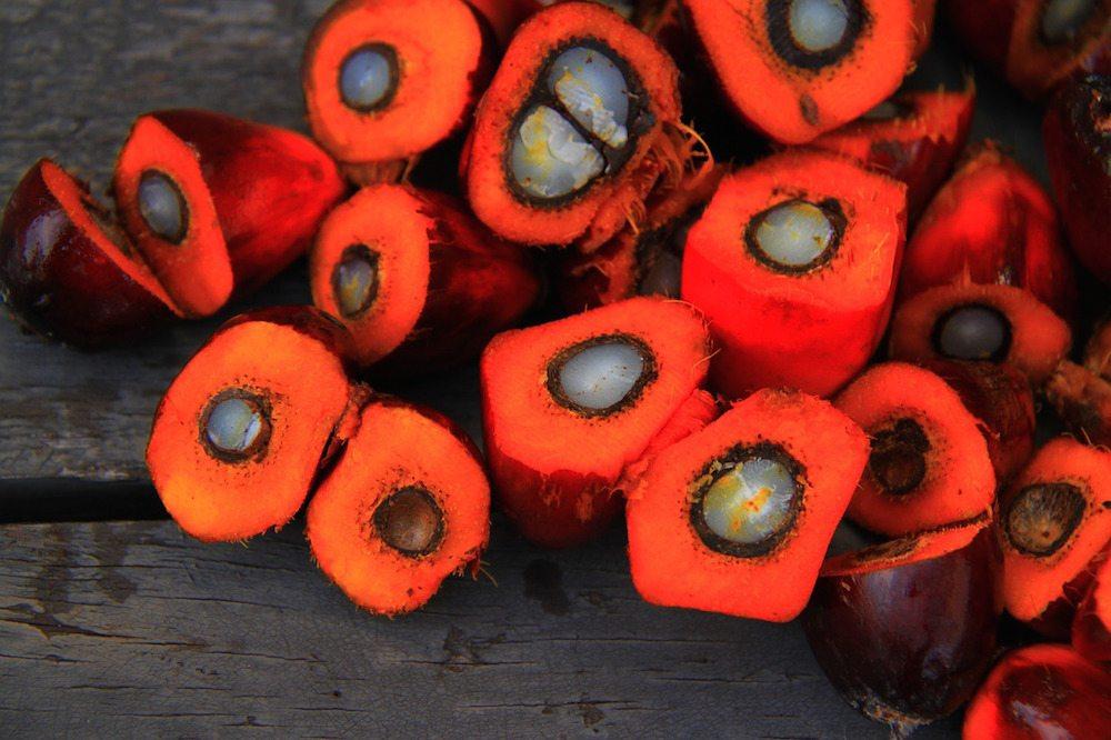 Palmöl gesund