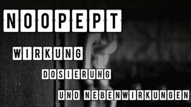 Noopept Supplement