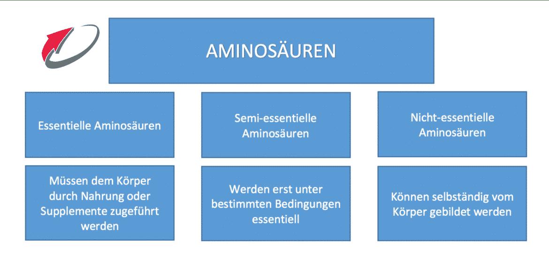 Semi Essentielle Aminosäuren EAA