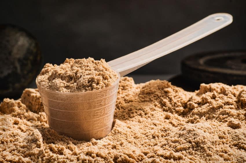 Ein Scoop Whey Protein Pulver