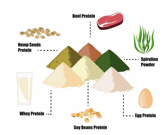 Verschiedene Proteinarten in der Übersicht