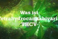 Was ist Tetrahydrocannabivarin THCV