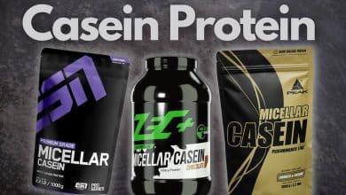 Casein Protein Testsieger